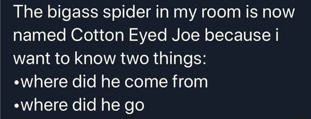 The bigass spider in my room is now named Cotton Eyed Joe because want to know two things  where did he come from where did he go meme
