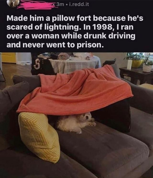 I.redd.it Made him a pillow fort because he's scared of lightning. In 1998, I ran over a woman while drunk driving and never went to prison. an meme