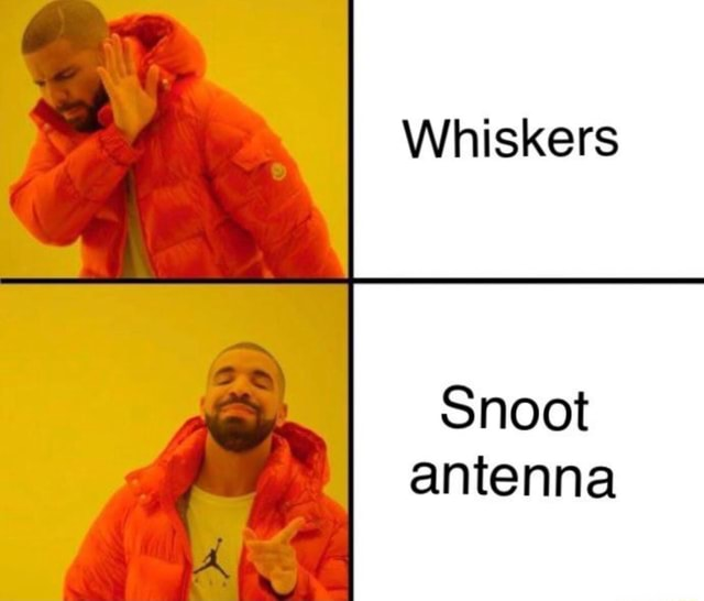 Whiskers Snoot antenna memes