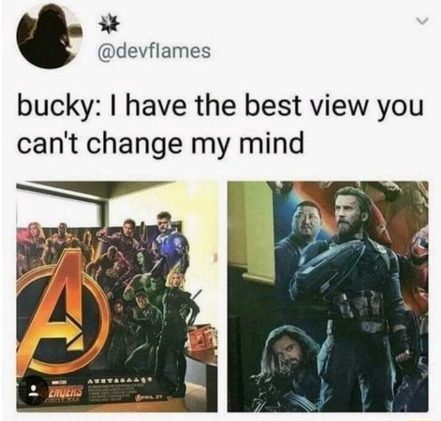 De eflumess, bucky I have the best view you can not change my mind meme