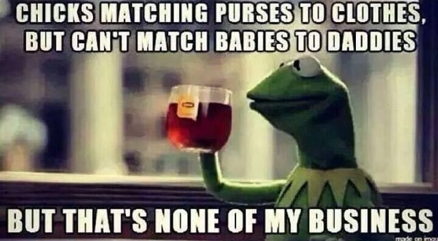 CHICKS MATCHING PURSES BUT CAN MATCH BABIES TO DADDIES BUT THAT'S NONE OF MY BUSINESS memes