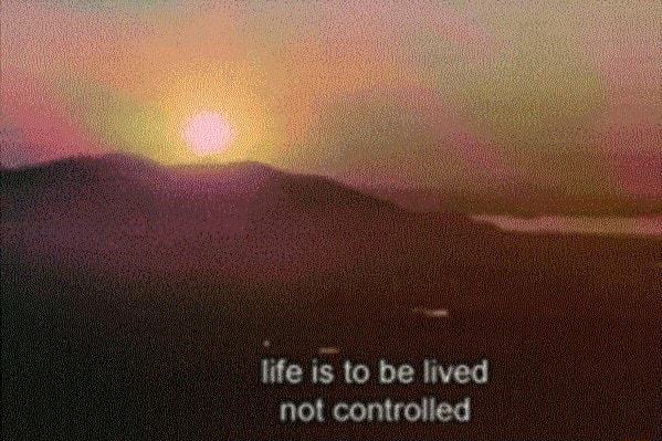Life is to be lived not controlled memes