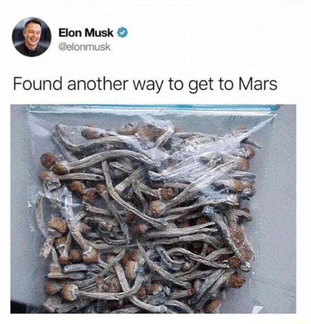 Musk Found another way to get to Mars meme