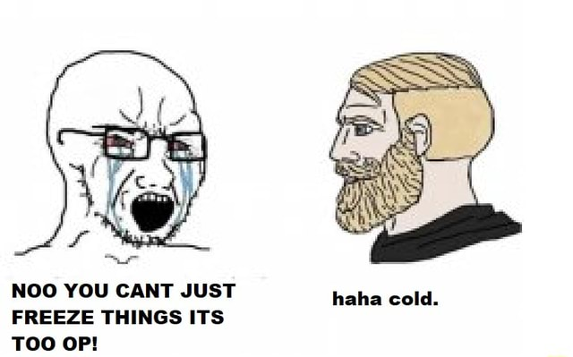 NOO YOU CANT JUST haha cold. FREEZE THINGS ITS memes