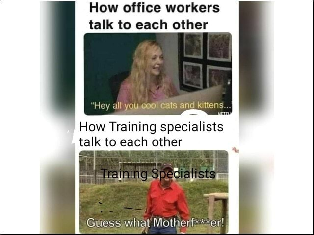 How office workers talk to each other Hey all you Cats and kittens. How Training specialists talk to each other Guess what meme