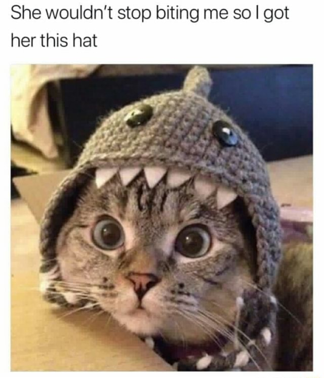 She wouldn't stop biting me so I got her this hat meme