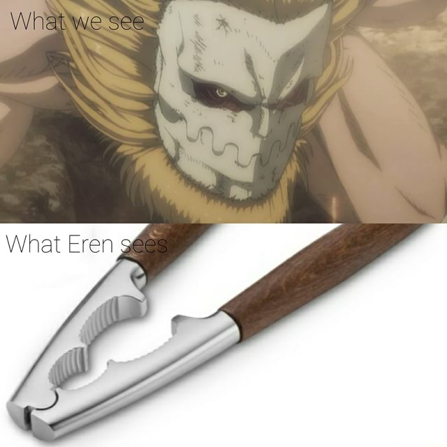 What we see What Eren gees memes