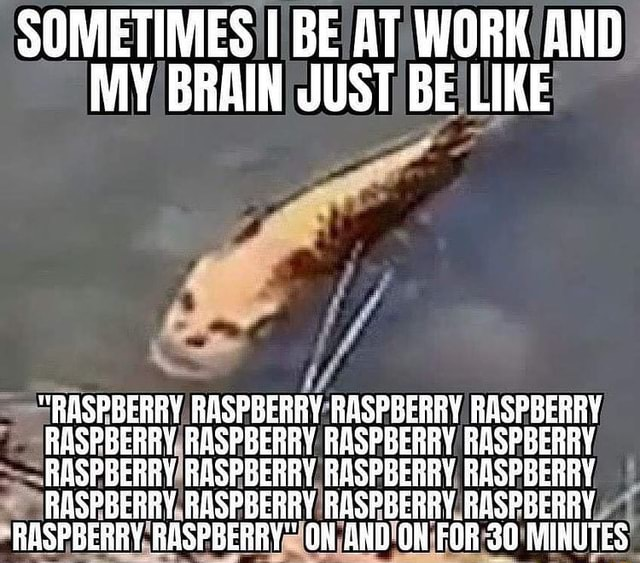 SOMETIMES I BE AT WORK AND MY BRAIN JUST BE LIKE RASPBERRY. RASPBERRY RASPBERRY RASPBERRY RASPBERRY RASPBERRY R RAS RASPBERRY RASPBERRY RASPBERRY, RASPBERRY RA RASPBERRY RASPBERRY ON AND ON FOR 30 MINUTES meme