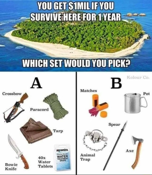 YOU SET SUMIL TE SURVIVE HERE FOR YEAR WHICH SET WOULD YOU PICK Crossbow Pot Spear Animal Tarp Water Knife Axe memes