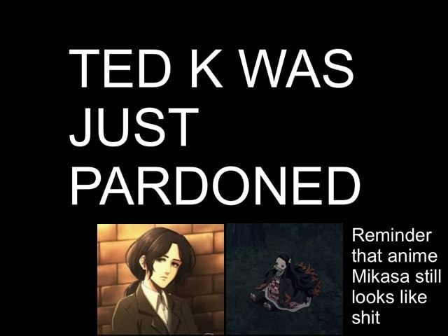 TED K WAS JUST PARDONED Reminder that anime Mikasa still looks like shit memes