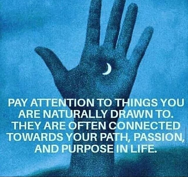 PAY ATTENTION TO THINGS YOU ARE NATURALLY DRAWN TO. THEY ARE OFTEN CONNECTED TOWARDS YOUR PATH, PASSION AND PURPOSEIINELIFE memes