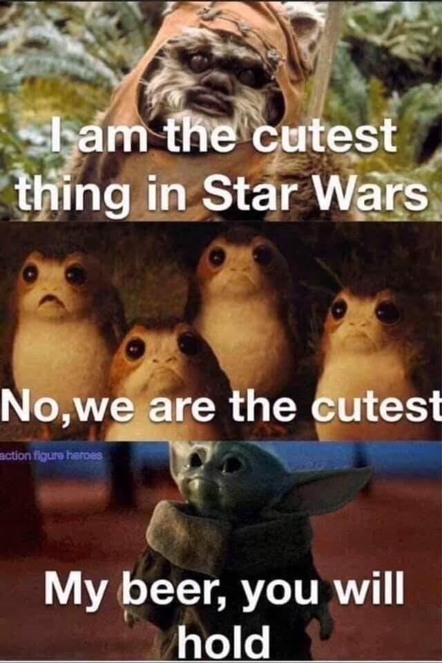 Fam the cutest thing in Star Wars No we are the cutest action gure My beer, you will hold meme