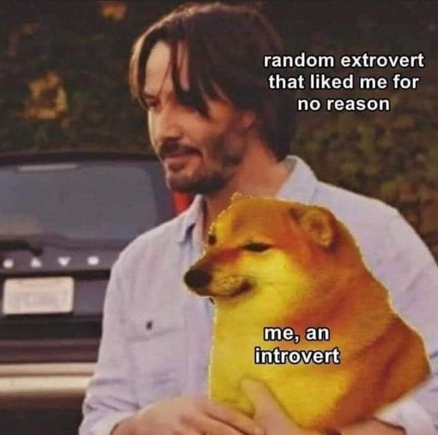 Random extrovert ws that liked me for no reason ime, an introvert memes