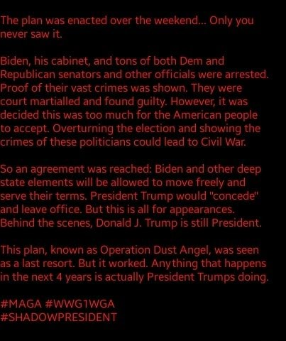 The plan was enacted over the weekend Only you never saw it. Biden, his cabinet, and tons of both Dem and Republican senators and other officials were arrested. Proof of their vast crimes was shown. They were court martialled and found guilty. However, it was decided this was too much for the American people to accept. Overturning the election and showing the crimes of these politicians could lead to Civil War. So an agreement was reached Biden and other deep state elements will be allowed to move freely and serve their terms. President Trump would concede and leave office. But this is all for appearances. Behind the scenes, Donald J. Trump is still President. This plan, known as Operation Dust Angel, was seen as a last resort. But it worked. Anything that happens in the next 4 years is ac