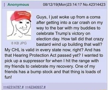 Anonymous No.42314423 Guys, I just woke up from a coma after getting into a car crash on my way to the bar with my buddies to celebrate Trump's victory on election day. How tall did that crazy IPG bastard wind up building that wall My CHL is valid in every state now, right And has that Hearing Protection Act passed yet I wanted to pick up a suppressor for when I hit the range with my friends to celebrate my recovery. One of my friends has a bump stock and that thing is loads of fun 42314787 42340937 meme