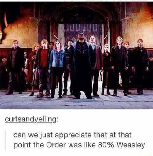 Curlsandyelli can we just appreciate that at that point the Order was like 80% Weasley memes