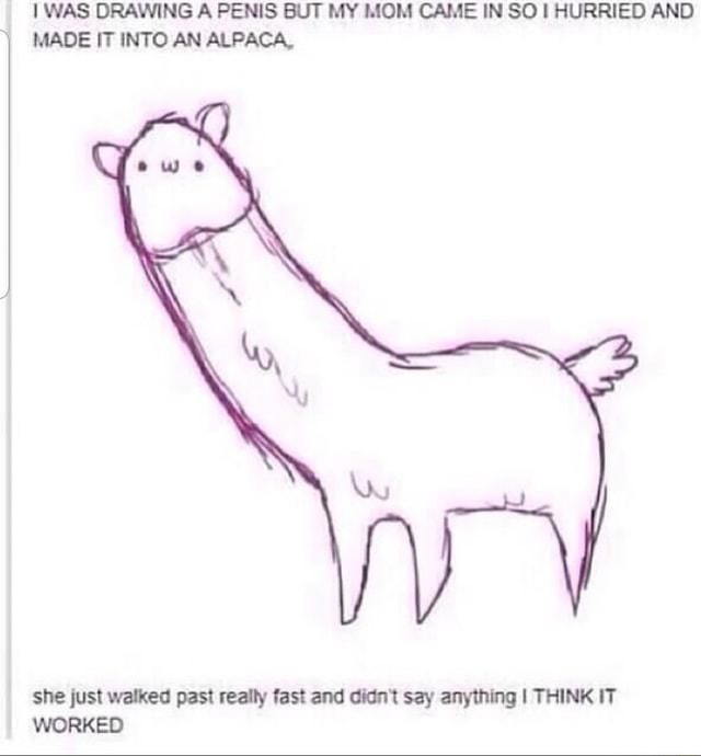 WAS DRAWING A PENIS BUT MY MOM CAME IN SO I HURRIED AND MADE IT INTO AN ALPACA, she just walked past really fast and didn't say anything I THINK IT WORKED memes