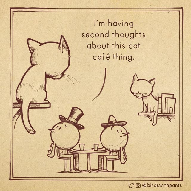 I'm having second thoughts about this cat caf thing. FF 0 birdswithpants meme