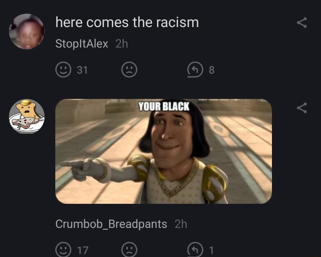 Here comes the racism StopltAlex 31 4 YOUR BLACK Crumbob Breadpants on memes