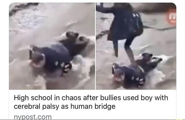 High school in chaos after bullies used boy with cerebral palsy as human bridge memes