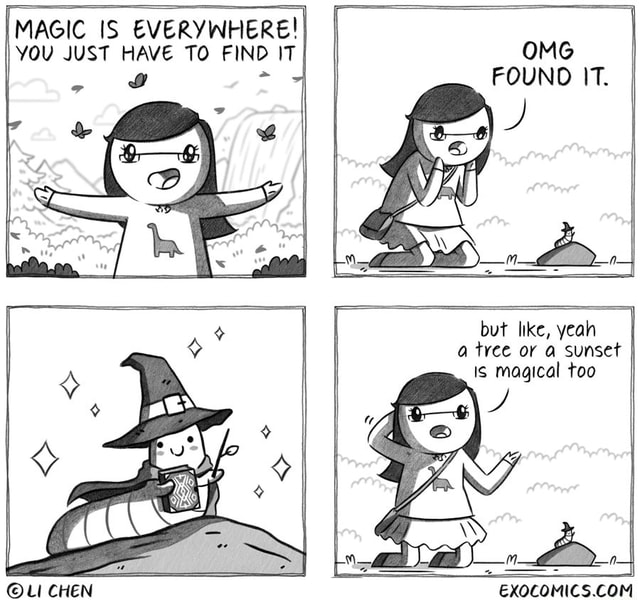 OMG FOUND IT. MAGIC IS YOU JUST HAVE TO FIND IT but like, yeah a tyee or a sunset Is magical too memes