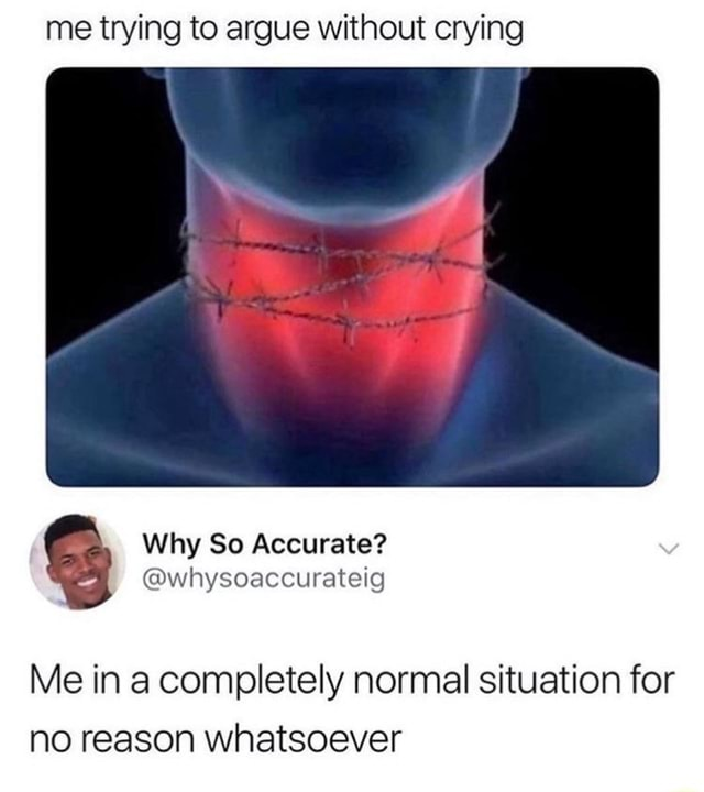 Me trying to argue without crying whysoaccurateig Why So Accurate Me in a completely normal situation for no reason whatsoever memes