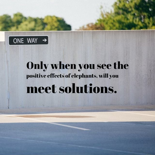 Only when you see the positive effects of elephants, will you meet solutions memes