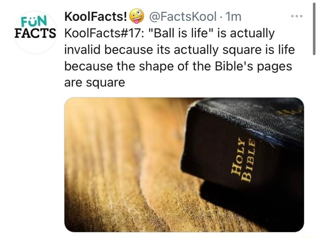 FUN KoolFacts FactsKool FACTS Ball is life is actually invalid because its actually square is life because the shape of the Bible's pages are square memes
