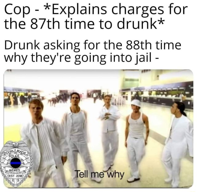 Cop *Explains charges for the 87th time to drunk* Drunk asking for the 88th time why they're going into jail Tell meme