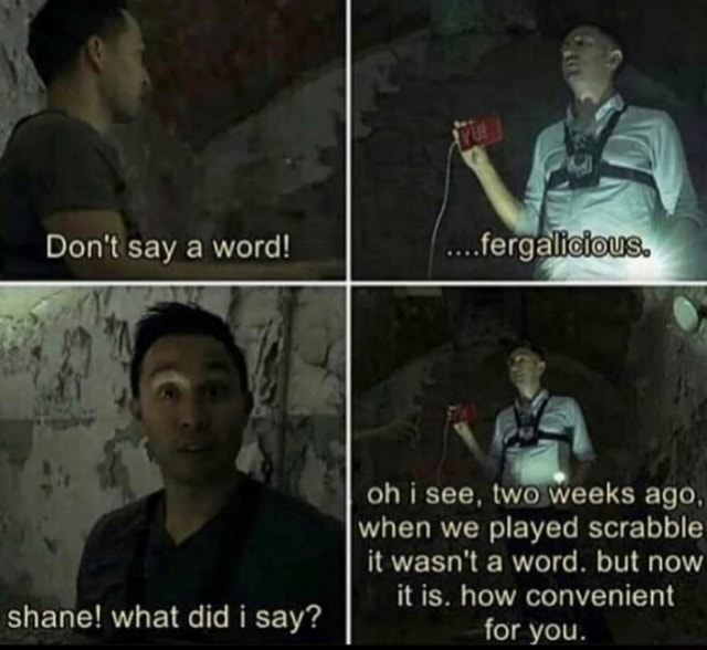 Do not say a word HOUSS oh see, two weeks ago, when we played scrabble it wasn't a word. but now it is. how convenient anel id shane what did i say for you memes