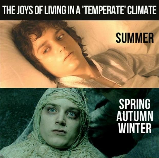 THE JOYS OF LIVING IN A TEMPERATE CLIMATE SUMMER SPRING AUTUMN WINTER meme