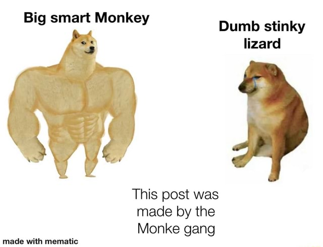 Big smart Monkey Dumb stinky lizard This post was made by the Monke gang made with mematie memes
