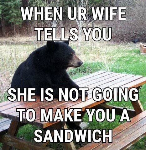 WHEN UR WIFE TELLS, YOU SHE IS NOT. TO MAKE YOU A SANDWICH meme