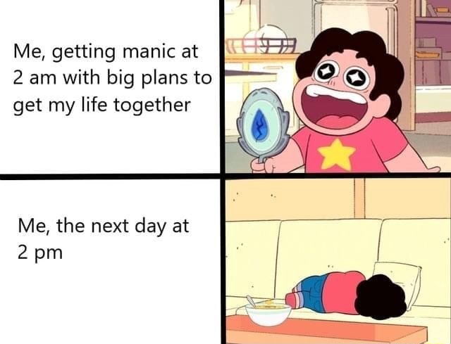Me, getting manic at 2 am with big plans to get my life together Me, the next day at pm meme