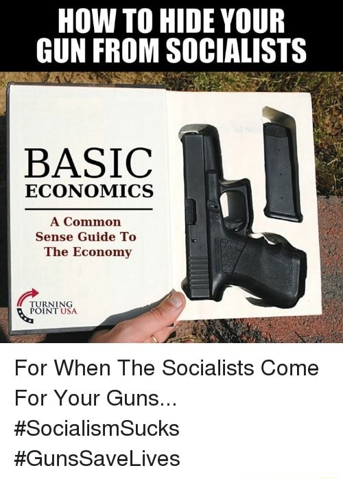 HOW TO HIDE YOUR GUN FROM SOCIALISTS BASIC ECONOMICS A Common Sense Guide To The Economy For When The Socialists Come For Your Guns SocialismSucks GunsSaveLives meme