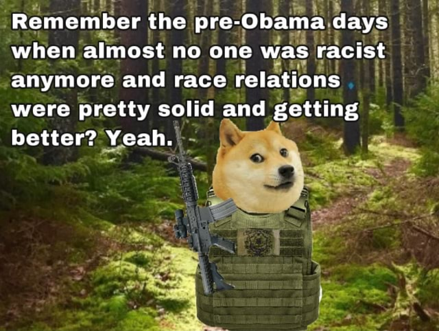Remember the pre Obama days when almost no one was racist anymore and race relations were pretty solid and getting better Yeah. ww memes