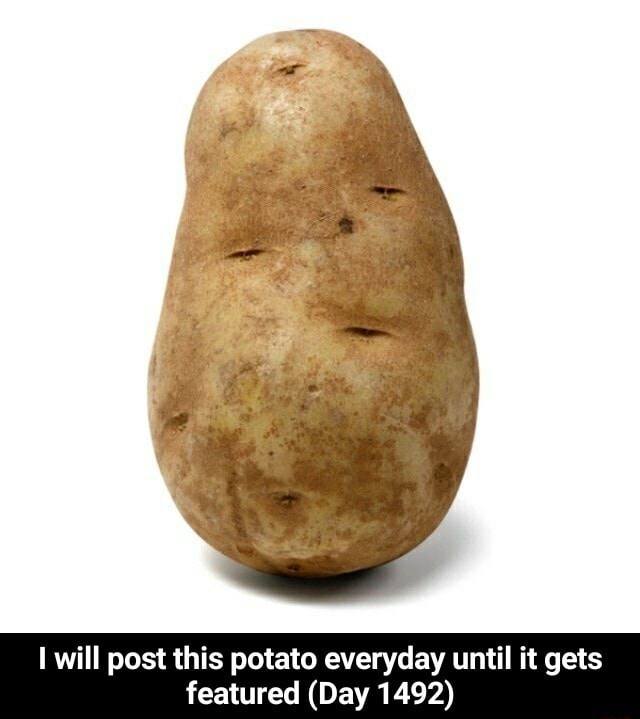 I will post this potato everyday until it gets featured Day 1492 I will post this potato everyday until it gets featured Day 1492 meme