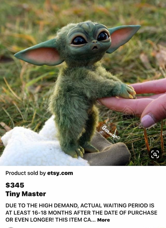 SS XX Product sold by $345 Tiny Master DUE TO THE HIGH DEMAND, ACTUAL WAITING PERIOD IS AT LEAST 16 18 MONTHS AFTER THE DATE OF PURCHASE OR EVEN LONGER THIS ITEM CA More memes