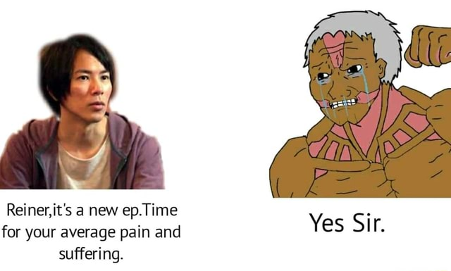 Reiner, for it's your a new average ep.Time pain and Yes Si for your average pain and suffering memes