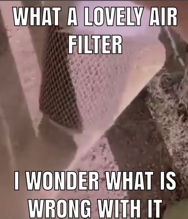 WHAT A LOVELY AIR FILTER I WONDER WHAT IS WRONG WITH IT memes