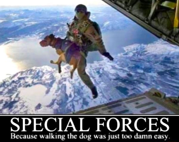 SPECIAL FORCES Because walking the dog was just too damn easy meme