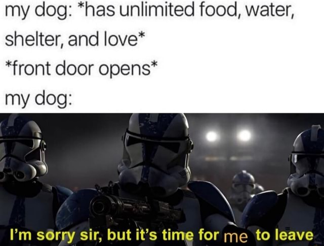 My dog *has unlimited food, water, shelter, and love* *front door opens* my dog de I'm sorry sir, but it's time for me to leave memes