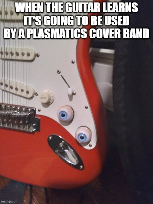 WHEN THE GUITAR LEARNS IT'S GOING TO BE USED BY A PLASMATICS COVER BAND memes