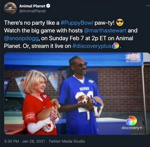 Animal Planet  There's no party like a PuppyBow paw ty Watch the big game with hosts marthastewart and snoopdogg, on Sunday Feb 7 at ET on Animal Planet. Or, stream it live on discoveryplus . discovery PM  Jan 28, 2021  Twitter Media Studio memes