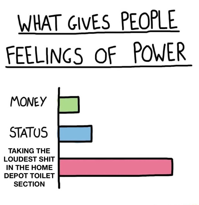 WHAT GIVES PEOPLE FEELINGS OF POWER MONEY STATUS TAKING THE LOUDEST SHIT IN THE HOME DEPOT TOILET SECTION memes