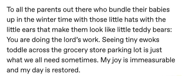 To all the parents out there who bundle their babies up in the winter time with those little hats with the little ears that make them look like little teddy bears You are doing the lord's work. Seeing tiny ewoks toddle across the grocery store parking lot is just what we all need sometimes. My joy is immeasurable and my day is restored meme