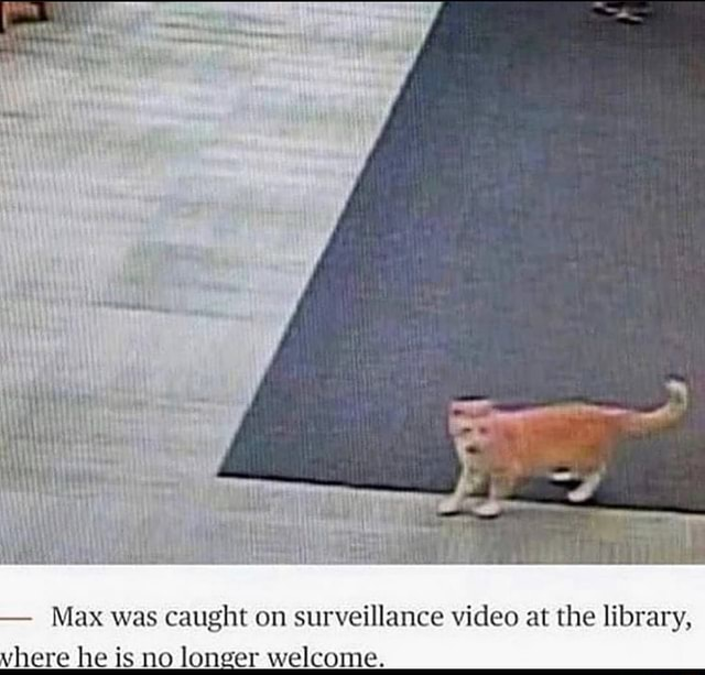 Ty Max was caught on surveillance at the library, vhere he is no longer welcome memes