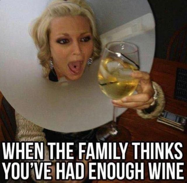 WHEN THE FAMILY THINKS YOU'VE HAD ENOUGH WINE memes