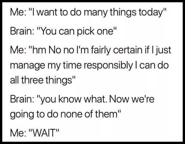 Me I want to do many things today Brain You can pick one Me hm No no I'm fairly certain if I just manage my time responsibly I can do all three things Brain you know what. Now we're going to do none of them Me WAIT meme