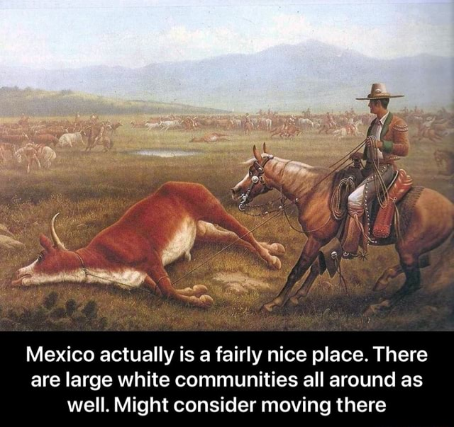 Mexico actually is a fairly nice place. There are large white communities all around as well. Might consider moving there Mexico actually is a fairly nice place. There are large white communities all around as well. Might consider moving there meme